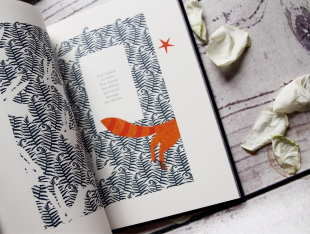 The Fox and the star book review